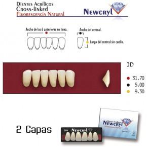 Dentes 2D LO A2